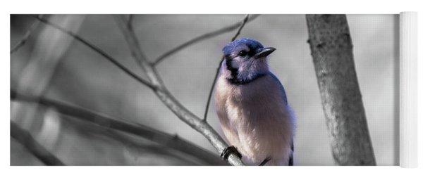 Blue Jay Yoga Mat