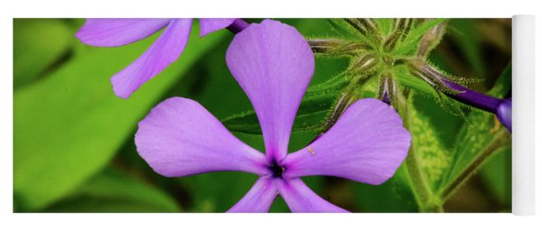 Blue Phlox Yoga Mat