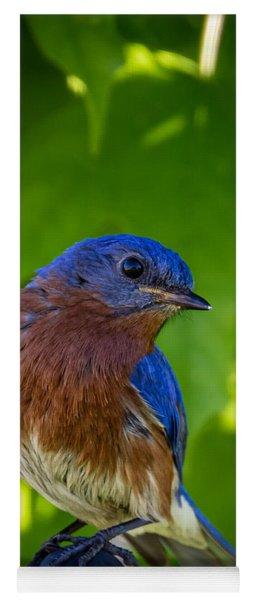 Bluebird Yoga Mat