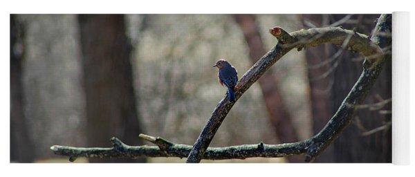 Bluebird, Bluebird, Sing To Me Yoga Mat
