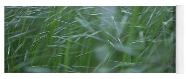 Blurry Wheat Yoga Mat