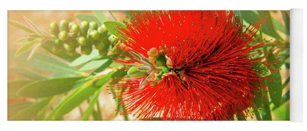 Bottlebrush Bloom Yoga Mat