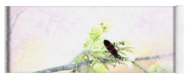 Boxelder Bug In Morning Haze Yoga Mat