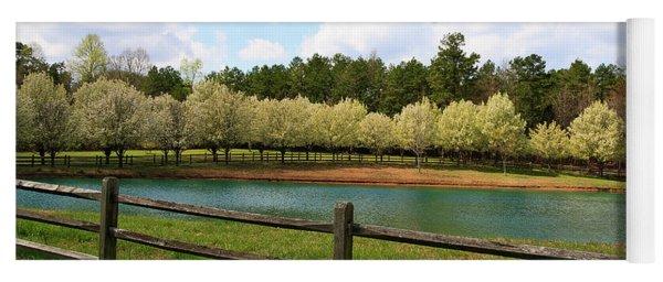 Bradford Pear Trees Blooming Yoga Mat