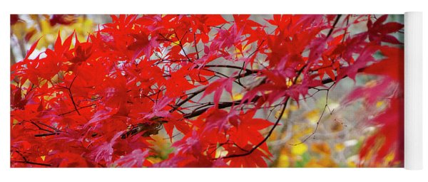 Brilliant Fall Color Yoga Mat