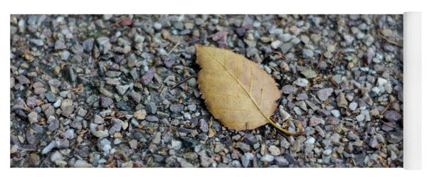 Yoga Mat featuring the photograph Brown Leaf On Gravel by Scott Lyons