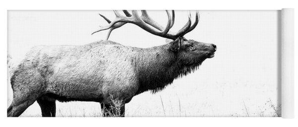 Bull Elk In Rut Yoga Mat