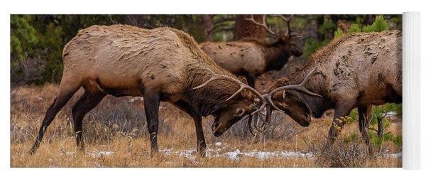Bull Elks Fighting Yoga Mat
