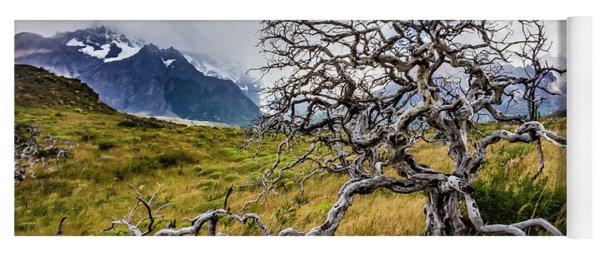 Burnt Tree, Torres Del Paine, Chile Yoga Mat
