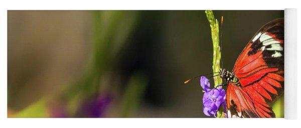Butterfly Landing On Purple Flower Yoga Mat