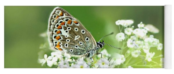 Butterfly On Babybreath Yoga Mat
