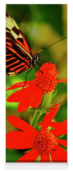 Butterfly On Red Flower Yoga Mat