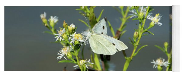 Cabbage White Butterfly On Flowers Yoga Mat