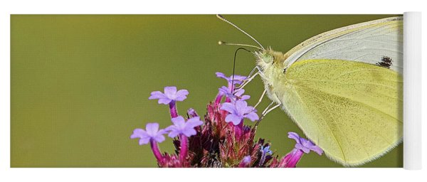 Cabbage White Butterfly Yoga Mat