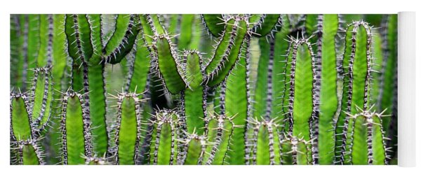 Cacti Wall Yoga Mat