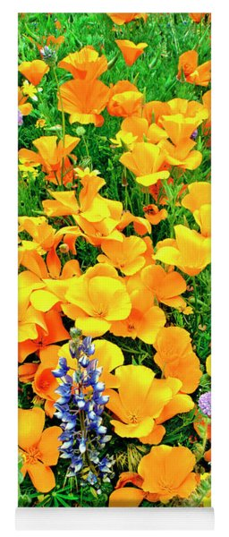 California Poppies And Betham Lupines Southern California Yoga Mat