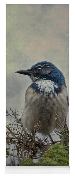 Yoga Mat featuring the photograph California Scrub Jay - Vertical by Patti Deters