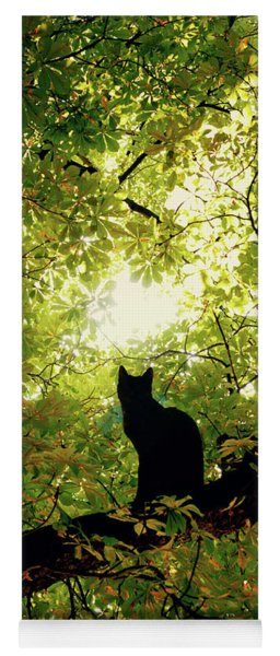 Cat On A Tree Yoga Mat