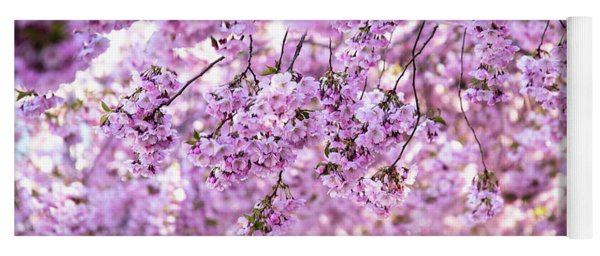 Cherry Blossom Flowers Yoga Mat