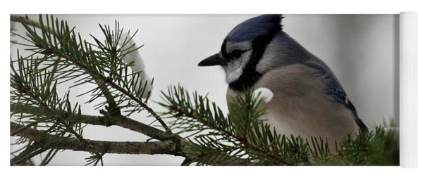 Chilly Jay Yoga Mat