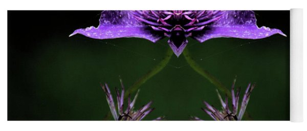 Yoga Mat featuring the photograph Clematis 1 by Buddy Scott
