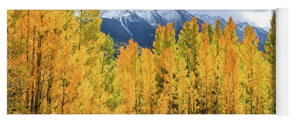 Colorado Aspens And Mountains 1 Yoga Mat