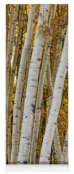 Colorado Aspens Yoga Mat
