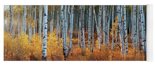 Colorado Autumn Wonder Panorama Yoga Mat