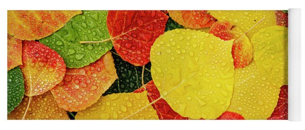 Colorful Aspen Tree Leaves With Water Drops Yoga Mat