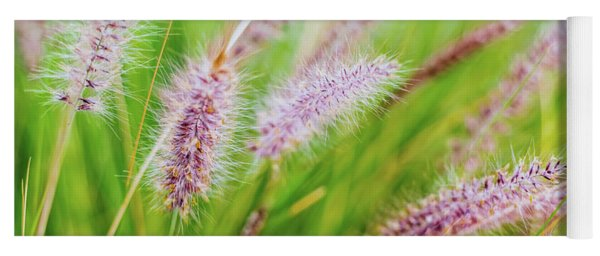 Colorful Flowers In Purple Spikes, Purple Fountain Grass, Close- Yoga Mat