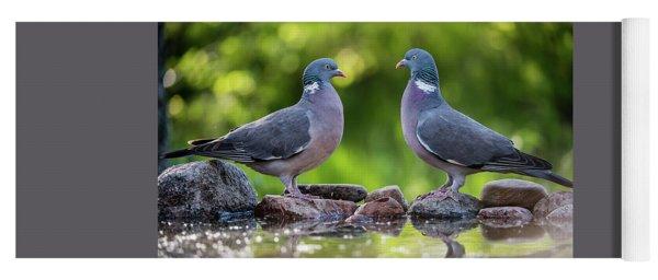 Common Wood Pigeons Meeting At The Waterhole Yoga Mat