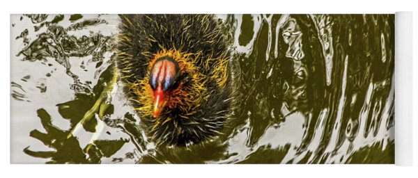 Coot Chick And Reflections Yoga Mat