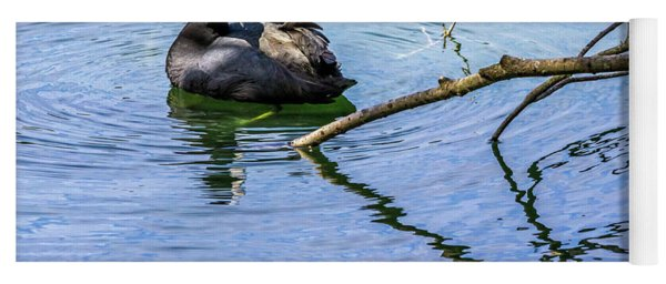 Coot With Branches Yoga Mat