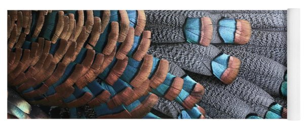Yoga Mat featuring the photograph Copper-tipped Ocellated Turkey Feathers Photograph by Debi Dalio