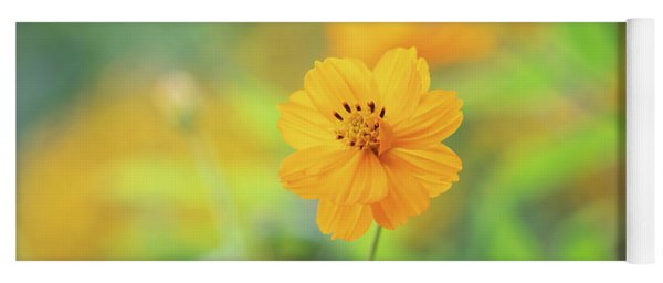 Cosmos Sulphureus Cosmic Orange Yoga Mat