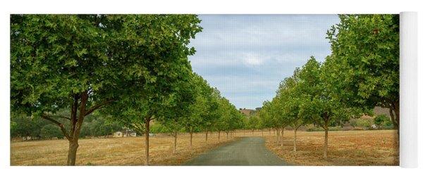 Country Lane To Vineyard Yoga Mat