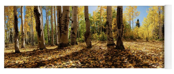 Crested Butte Colorado Fall Colors Panorama - 3 Yoga Mat