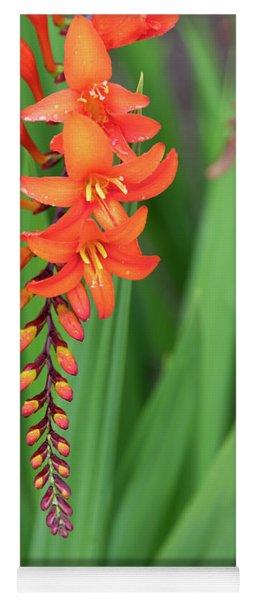 Crocosmia Zeal Unnamed Flower Yoga Mat