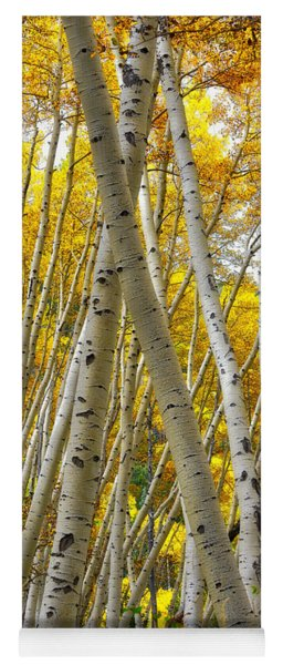 Crossed Aspens Yoga Mat