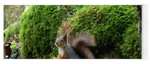 Curious Squirrel Yoga Mat