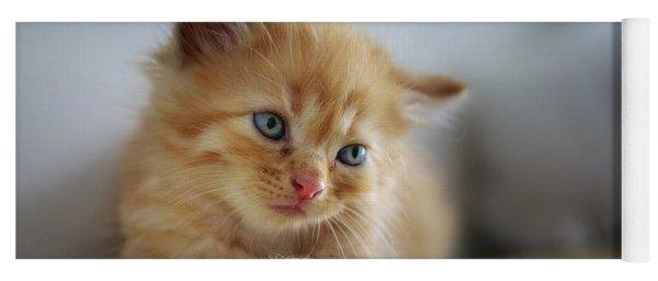 Cute Orange Kitty Yoga Mat