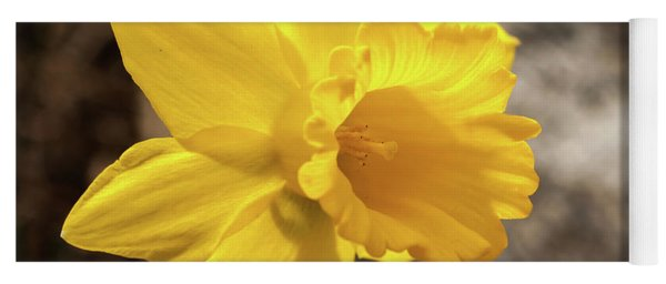 Daffodil Yoga Mat