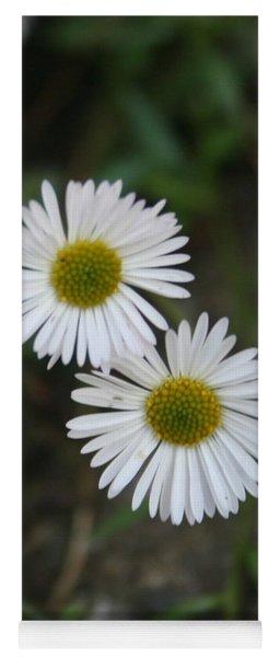 Daisy Daisy And Your White Petal Minding The Sun Core Yoga Mat