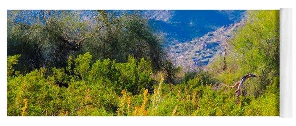 Deep Desert Valley In A Sonoran Desert Spring Yoga Mat