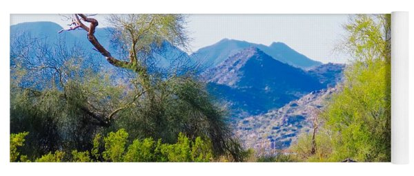 Deep Desert Valley In A Sonoran Desert Spring Yoga Mat
