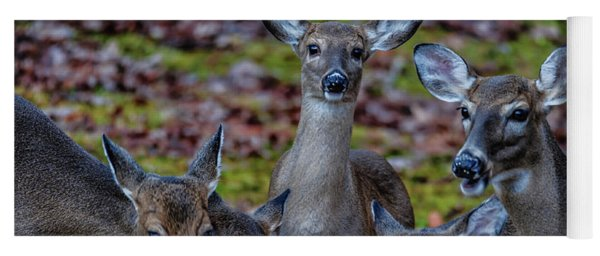 Deer Gathering Yoga Mat