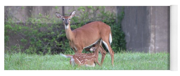 Deer Nursing Yoga Mat