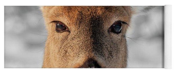 Deer Portrait Yoga Mat