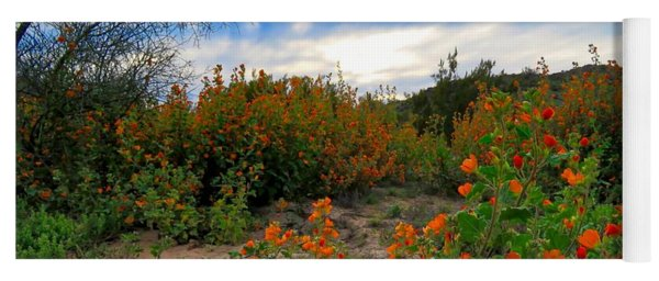 Desert Wildflowers In The Valley Yoga Mat