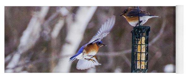 Docking Bluebird Yoga Mat
